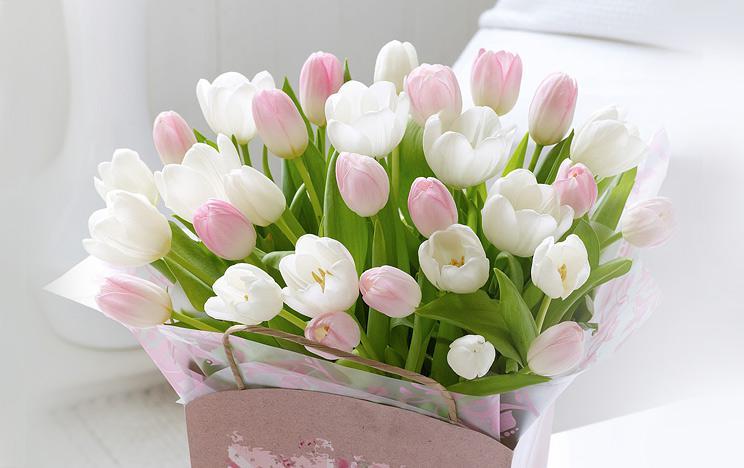 Поздравление с днем рождения с тюльпанами